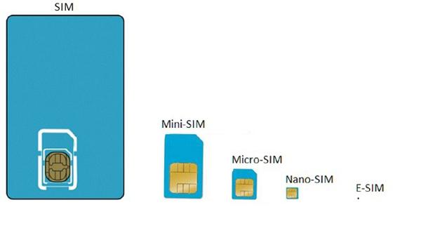 sim-sizes.jpg